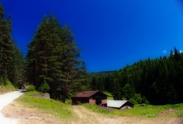 Къщичка в гората