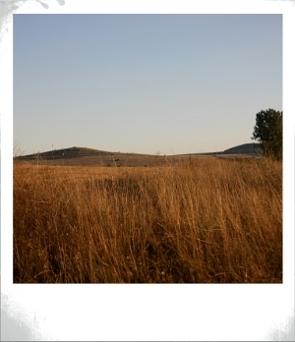 Доста плоските хълмчета на югозапад от София