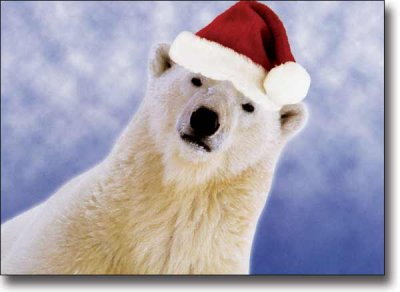 Xmas Card Polar Bear